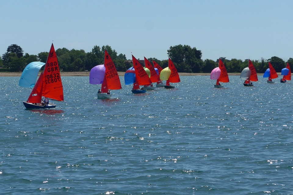 A fleet of Mirrors racing downwind with their spinnakers set on a sunny day